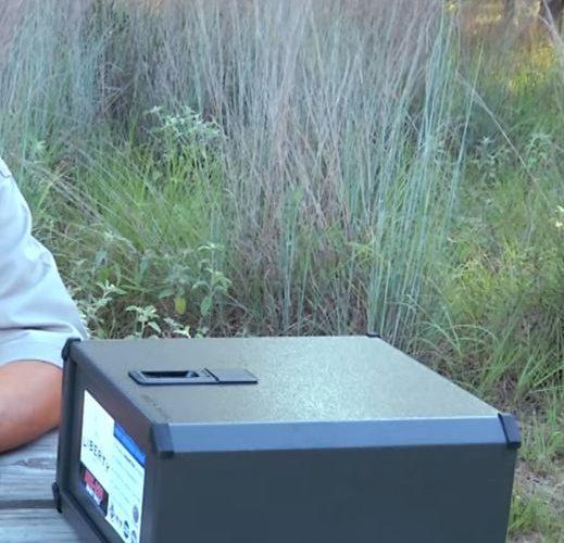 biometric gun safe picture